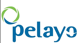 Logo de Pelayo
