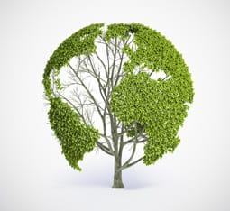 Imagen de recurso sobre sostenibilidad integrada
