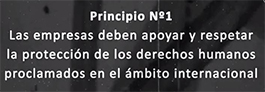 Primer princpio